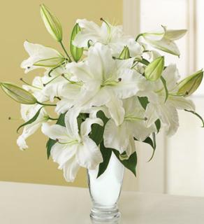 Graceful White Lily Bouquet for Sympathy