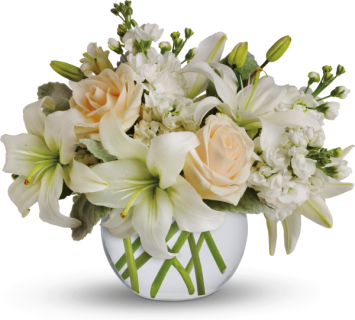 Shop by Color Flower Delivery Easley, SC : Valentin